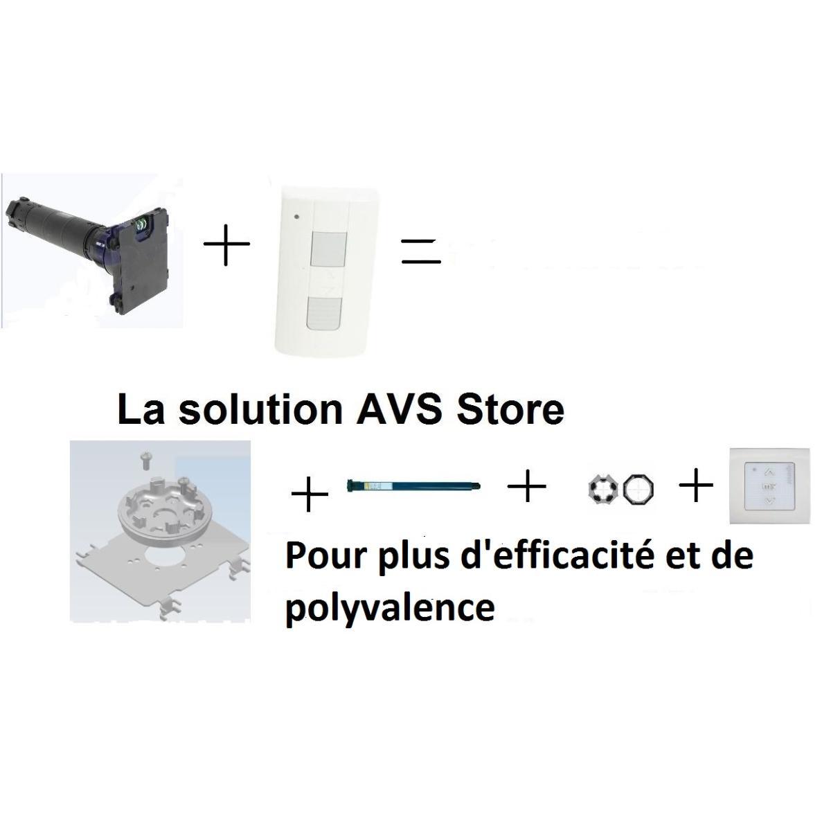 Kit D Adaptation Avs Store Pour Moteur Somfy Dans Volet Roulant Bubendorff Commande Rts